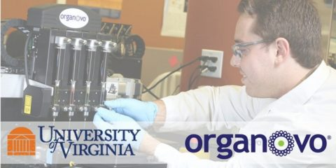Organovo-Working-to-3D-Print-Muscle-Tissue